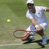 30岁的美国网球运动员约翰逊将在12月迎接他们的第一个孩子